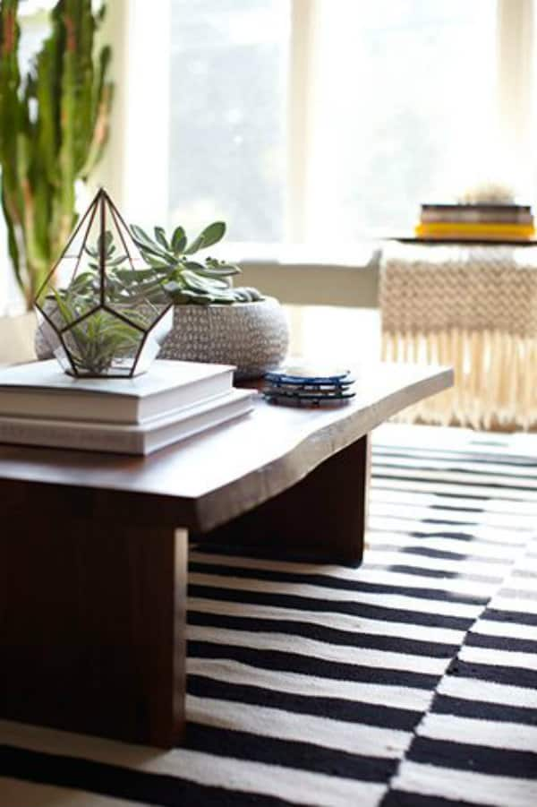 succulents on coffee table via @mystylevita