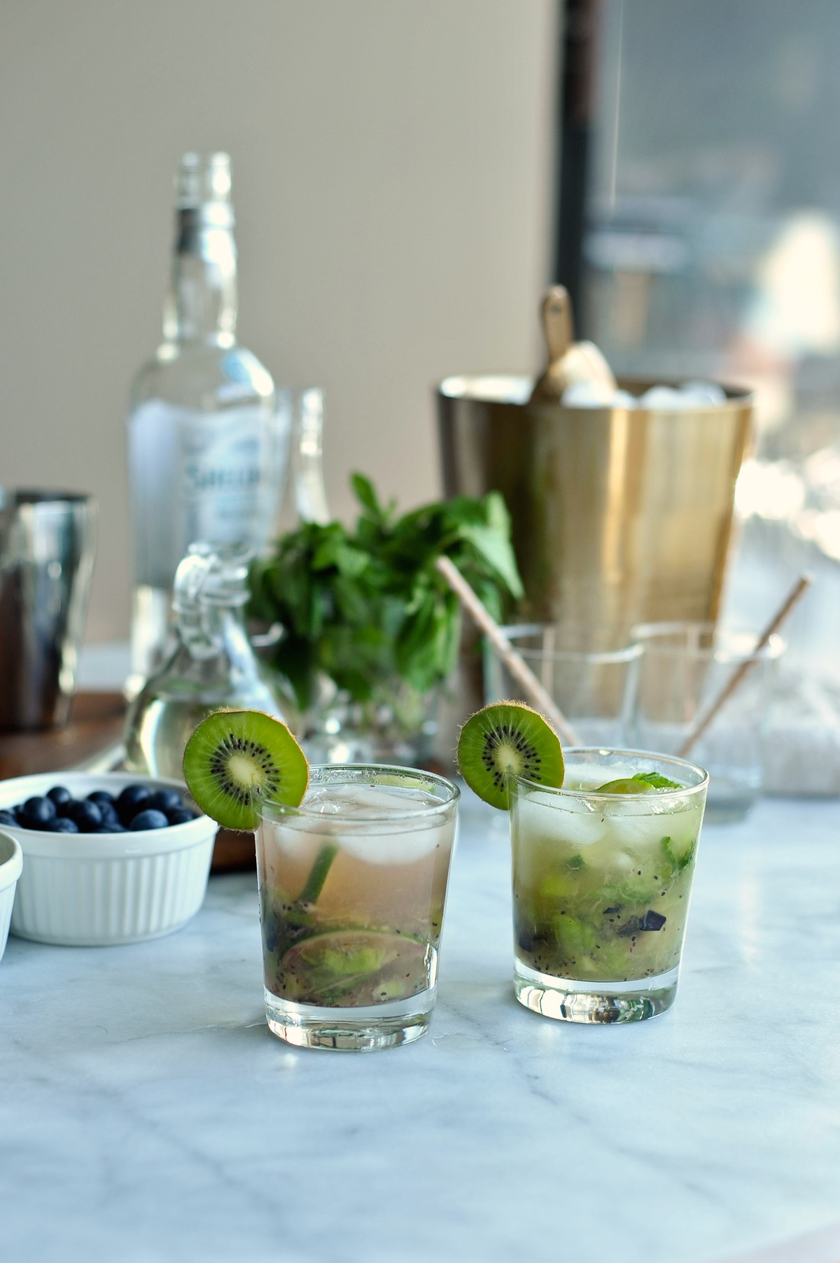 Blueberry Kiwi Mojito Recipe