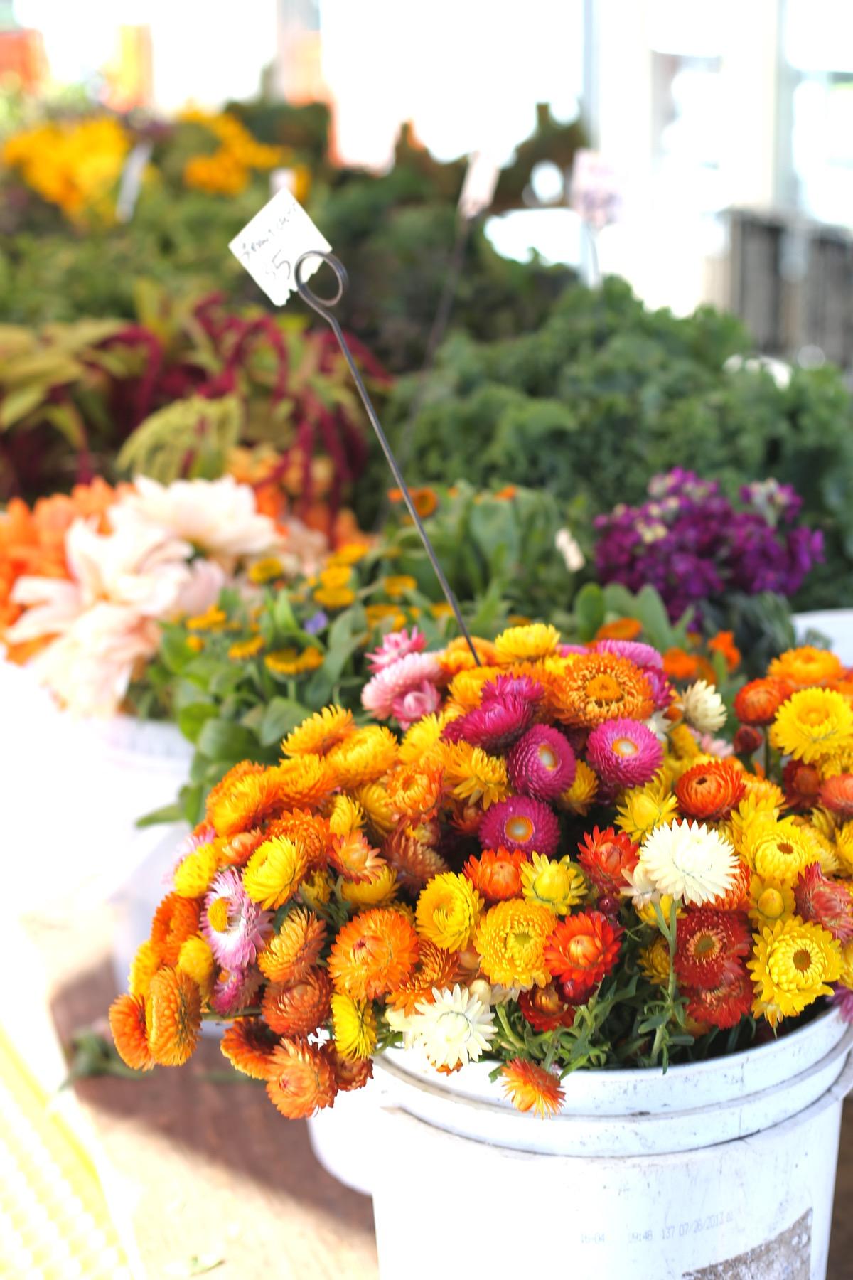 San Francisco Travel Ideas Ferry Buildling Farmer's Market - @mystylevita