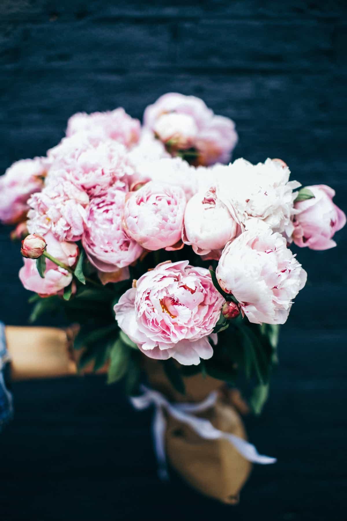The Pink Peonies pink peonies & a weekend look - my style vita