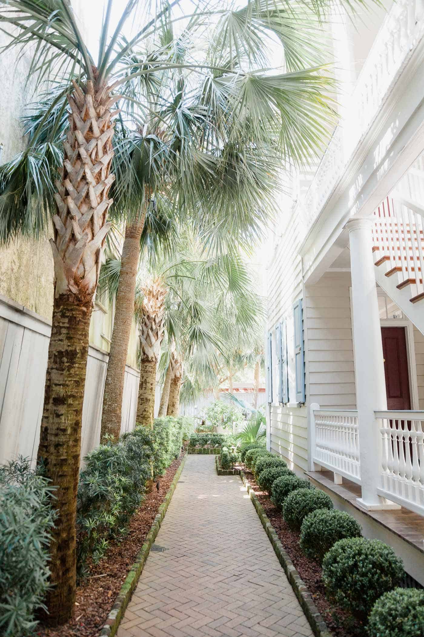 palm trees, charleston, best boutique hotel in charleston - My Style Vita @mystylevita