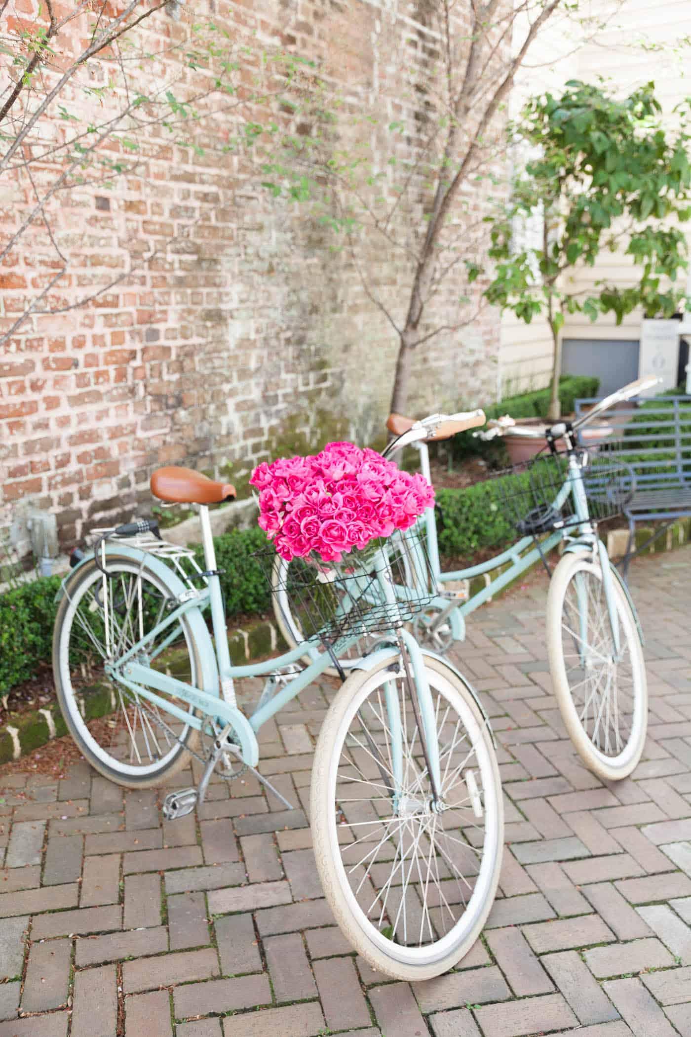 bicycle with flowers, charleston, best boutique hotel in charleston - My Style Vita @mystylevita