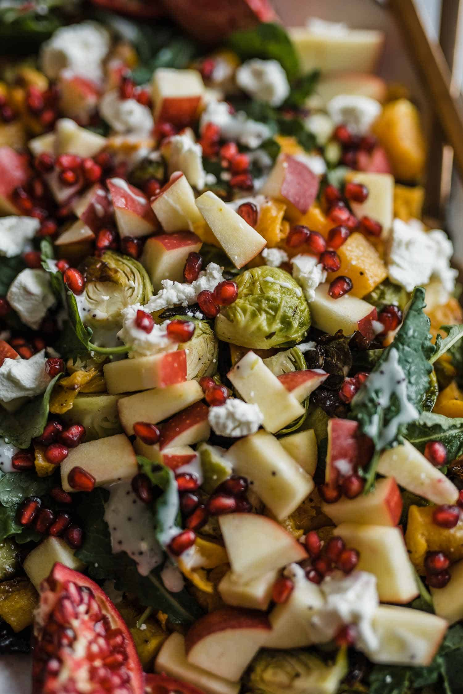 Brussels Sprouts and Butternut Squash Salad Recipe, warm autumn salad, thanksgiving side dish ideas - My Style Vita