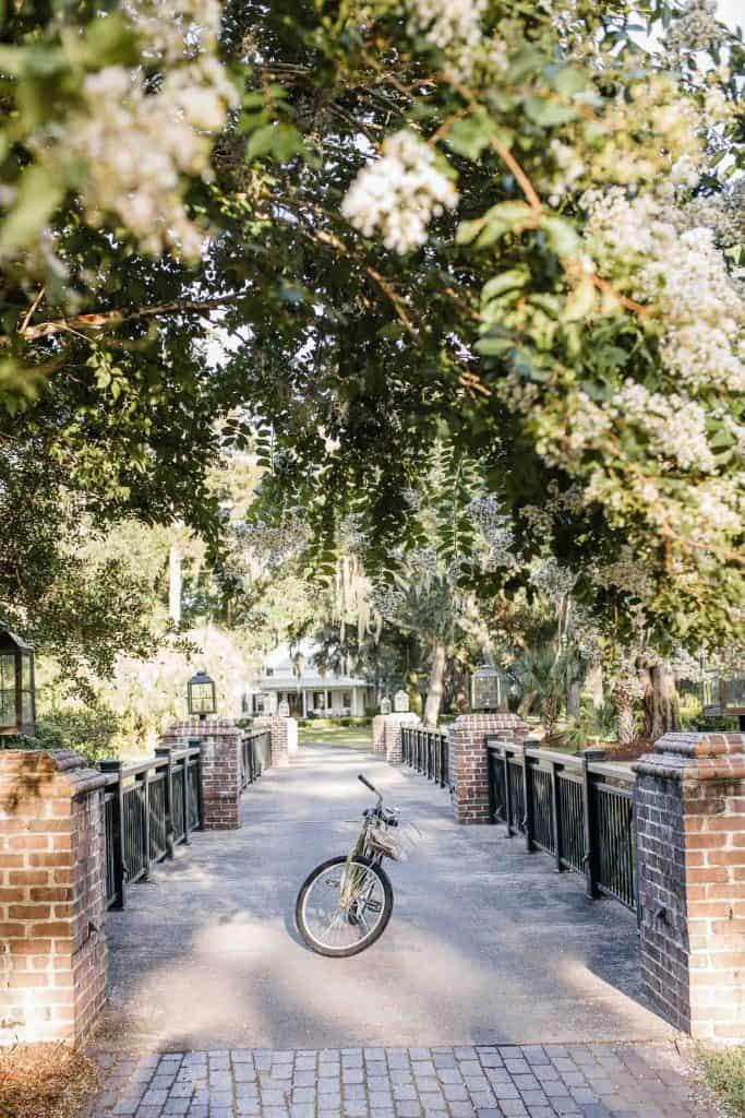 Bike Ride At Palmetto Bluff