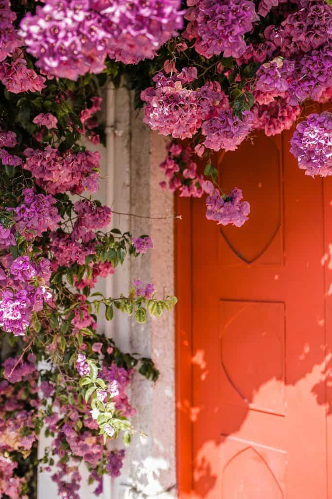 front door finds in Lisbon