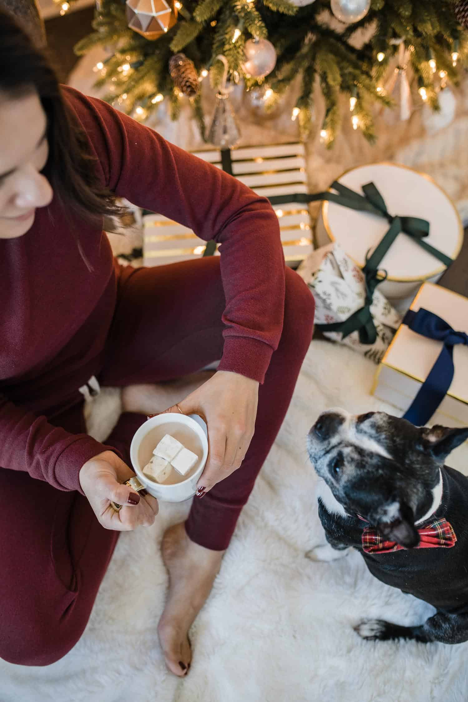 Jessica Spending Time  With Her Dog As One Of Her Christmas Traditions